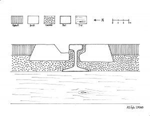 N-track_S-Rail_Section